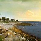 Along the Coast by John Rivera