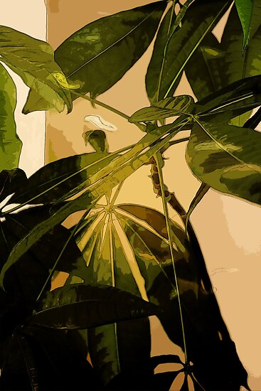 Leaves by Colin Bentham