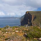 Cape Hauy  by Richard Murias