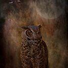 Wahuhi by KathleenRinker