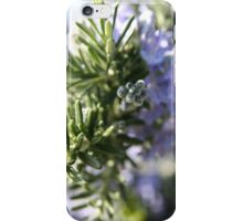 Rosemary - 2011 iPhone Case/Skin