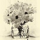 Backlit Bouquet by Ellesscee