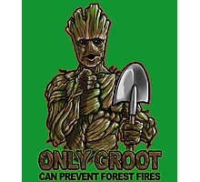 Only Groot Photographic Print
