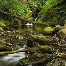Poulanass waterfall & river , Glendalough. by Martina Fagan