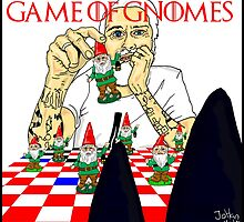 Game of gnomes by Johan Malm