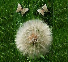DANDILION PILLOW WITH DANDILION BUTTERFLIES MADE FROM THE DANDILION...PILLOW AND OR TOTE BAG by ✿✿ Bonita ✿✿ ђєℓℓσ