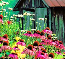 COUNTRY GARDEN by Chuck Wickham