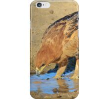 Tawny Eagle - Curious Life and Funny Nature iPhone Case/Skin