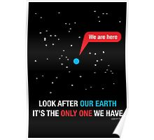 Look After Our Earth Poster