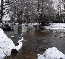 Lymington River, winter 2010 by JeremyAnson