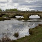 Bridge at Ross by Jan Pudney
