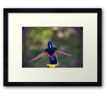 Floating On Air Framed Print