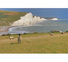 Sheep and the Seven Sisters - HDR Photographic Print