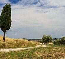 A Tuscan Scene, Pienza, Siena, Tuscany, Italy by Andrew Jones