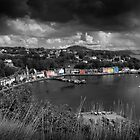Colours of Tobermory  by Rob Hawkins