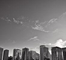 Chicago Cityscape Skyline by Norman Repacholi