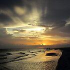 Sanibel Sunset by Rosie Brown