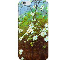 DOGWOOD TREE IN FOG iPhone Case/Skin