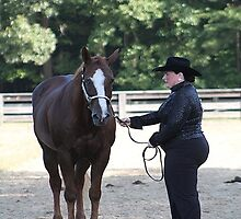 Deer Run Horse Show Club Sept. 20, 2014 (48) by DLitefulImagery