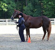 Deer Run Horse Show Club Sept. 20, 2014 (76) by DLitefulImagery