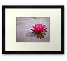 Serenity in pink Framed Print
