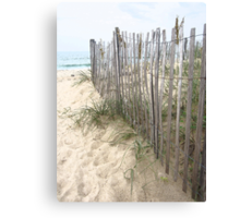 Dune Creeper Canvas Print