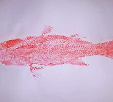 SURREAL PINK MULLET by alan barbour