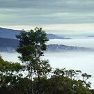Fog covering Hobart by Chris Chalk