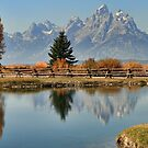 A Teton Autumn by Ann  Van Breemen