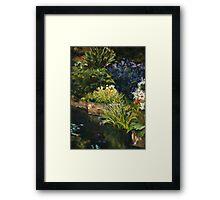 Hobart Botanic Gardens Framed Print