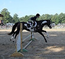 Deer Run Horse Show Club Sept. 20, 2014 (108) by DLitefulImagery