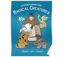 Hagrid's Home for Magical Creatures Poster