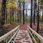 Bridge in the Autumn Forest by Gilda Axelrod