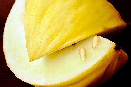 Honeydew Melon by Ellesscee
