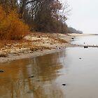 Autumn On The River by WildestArt