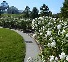 Lewis Ginter Botanical Garden by ctheworld