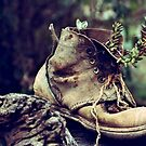 The Boot. by Jeanette Varcoe.