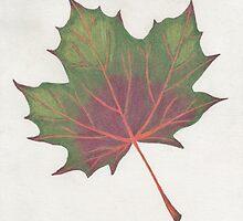 Fall Leaf (1) by zehava