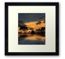3594 Framed Print