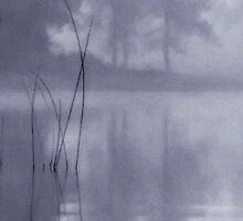 Blue Mist by Dave  Higgins