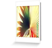 Palm Frans Greeting Card