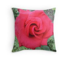 Could Be Velvet Throw Pillow