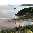 A new day dawns at Three Cliffs Bay by missmoneypenny