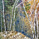 Birch trees by Elizabeth Kendall
