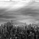 Aerial Chicago by Adam Kuehl