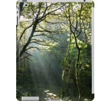 Winter Walks iPad Case/Skin