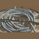 old rope in Devon by paula cattermole