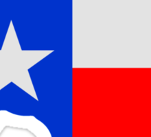 State of Texas Lone Star  Sticker