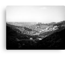 Forrest view  Canvas Print