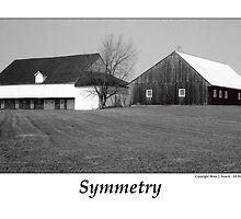 Symmetry by Brian Sesack